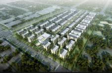 临港新片区生命科技产业园火热建设