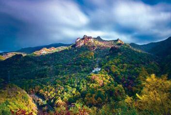 汪清林业局局长高延:坚持森林资源培育 走可持续经营之路