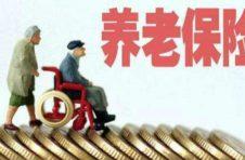 """为老年人解""""数字之忧"""" 上海把养老服务""""信息无障碍""""要求入法"""