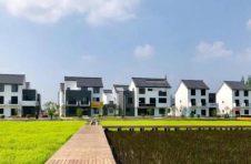 嘉定安亭的稻田里,将诞生一个企业创新研发中心
